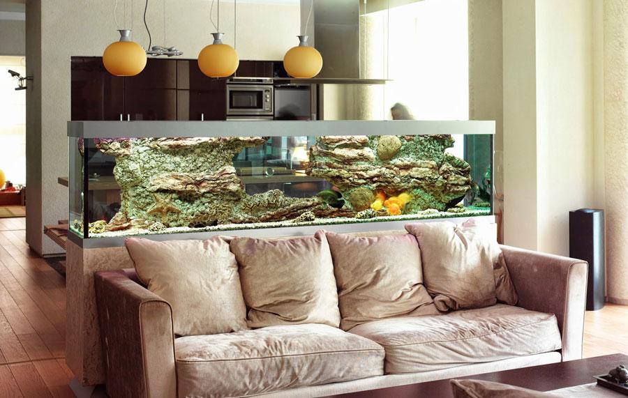 Vendita coralli online acquario marino e dolce coraldream for Arredamenti per acquari